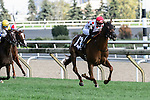 Toronto, ON - September  18:  Victory to Victory, #13, ridden by Florent Geroux   runs to victory  in  the Natalma Stakes  at Woodbine Race Course on September 18, 2016 in Toronto, Ontario. (Photo by Victor Biro/Eclipse Sportswire/Getty Images)