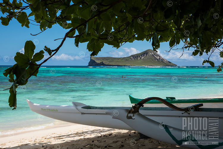 Outrigger canoes at Waimanalo Beach, Windward O'ahu; distant swimmers explore the reef of Waimanalo Bay, with Rabbit (or Manana) Island beyond.