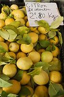Europe/France/06/Alpes-Maritimes/Menton: citrons de Menton sur le marché