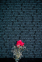Flower left at the Wall, the Vietnam Veterans Memorial in Washington, DC. Washington DC USA.