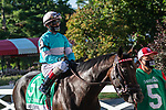 July 25, 2020: Mind Control ridden by John Velazquez. enters the track before the start of the Alfred G Vanderbilt grade 1  on Alfred G Vanderbilt  Day at Saratoga Race Course in Saratoga Springs, New York. Rob Simmons/Eclipse Sportswire/CSM