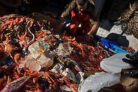 Spain_Recycling_Fashion_Ecoalf