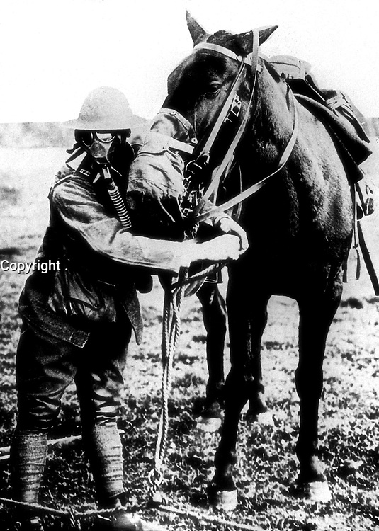 Gas masks for man and horse demonstrated by American soldier, ca.  1917-18.  (Bureau of Medicine and Surgery)<br /> Exact Date Shot Unknown<br /> NARA FILE #:  052-S-2303<br /> WAR & CONFLICT BOOK #:  640