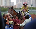 HALLANDALE BEACH, FL -DECEMBER 03:   Jockey Luis Saez being congratulated on his win of the  $200K Claiming Crown Jewel Stakes with #3 Royal Posse (NY) at Gulfstream Park on December 03, 2016 in Hallandale Beach, Florida. (Photo by Liz Lamont/Eclipse Sportswire/Getty Images)