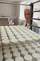 Europe/Europe/France/Midi-Pyrénées/46/Lot/Loubressac: Ferme Cazal-SARL Les Alpines - Production du Rocamadour AOC Fermier - les fromages frais moulés vont  partir sur des grilles pour l'affinage // France, Lot, Loubressac, labelled Les Plus Beaux Villages de France (The Most Beautiful Villages of France), Cazal Farm-Ltd The Alpine, Production of Rocamadour AOC Farmer, fresh cheeses are molded from wire racks for refining<br /> <br />  - Auto N°: 2010-103