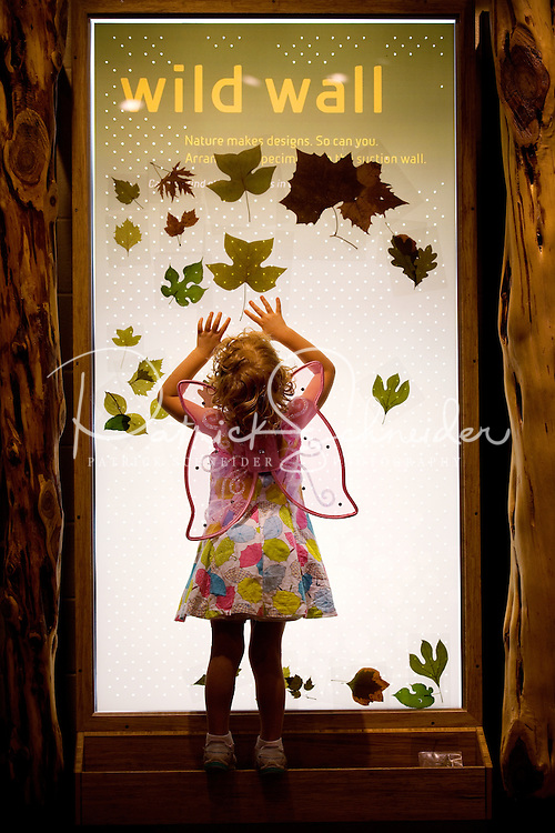 """Visitors to Charlotte's Discovery Place museum check out World Alive, the museum's exhibit with an aquarium, a rainforest, a biodiversity gallery and two hands-on labs created to inspire inquiry-based  learning. Here, a child is sticking leaves to the """"wild wall,"""" which uses air suction to let kids design. Discovery Place, Charlotte NC's interactive children's museum, unveiled its interactive exhibits and hands-on activities in June 2010. Renovations of the popular family museum were made possible by the City of Charlotte, the Arts and Science Council and private donations. Discovery Place museum has age-appropriate exhibits for kids of all ages."""