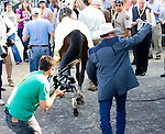 Larry Jones being filmed while waving to the crowd near the winners circle after winning The Black-Eyed Susan Stakes.  He is being filmed for an upcoming documentary.
