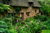 Cottage and garden in Chastleton. The Cotswolds, England