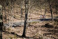 the breakaway<br /> <br /> Stage 6: Peynier to Brignoles (176km)<br /> 77th Paris - Nice 2019 (2.UWT)<br /> <br /> ©kramon