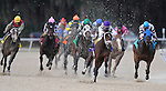 Brethren, ridden by jockey Ramon Dominguez, cruises to victory in the Sam F. Davis Stakes at Tampa Bay Downs in Tampa, Florida. Brethren is the half-brother to last year's Kentucky Derby winner Super Saver, is owned by WinStar Farm and trained by Todd Pletcher.