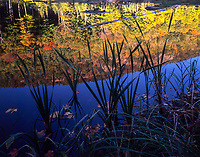 Reflections of Crane Mt in autumn in the Adirondack Mountains in New York state
