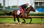LOUISVILLE, KY - MAY 03: Wonder Gadot, trained by Mark Casse, exercises in preparation for the Kentucky Oaks at Churchill Downs on May 3, 2018 in Louisville, Kentucky. (Photo by Alex Evers/Eclipse Sportswire/Getty Images)