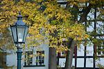 Europa, DEU, Deutschland, Nordrhein Westfalen, NRW, Eifel, Münstereifeler Wald, Bad Münstereifel, Osteifel, Herbst, Strassenlampe, Detail.  Kategorien und Themen, Architektur, Architektonisch, Architekturstil, Bauwerk, Gebäude, Historisch, Architekturfoto, Architekturphoto, Architekturfotografie, Architekturphotographie, Tourismus, Touristik, Touristisch, Touristisches, Urlaub, Reisen, Reisen, Ferien, Urlaubsreise, Freizeit, Reise, Reiseziele, Ferienziele<br /> <br /> [Fuer die Nutzung gelten die jeweils gueltigen Allgemeinen Liefer-und Geschaeftsbedingungen. Nutzung nur gegen Verwendungsmeldung und Nachweis. Download der AGB unter http://www.image-box.com oder werden auf Anfrage zugesendet. Freigabe ist vorher erforderlich. Jede Nutzung des Fotos ist honorarpflichtig gemaess derzeit gueltiger MFM Liste - Kontakt, Uwe Schmid-Fotografie, Duisburg, Tel. (+49).2065.677997, archiv@image-box.com, www.image-box.com]