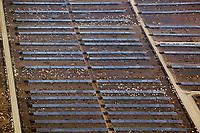 aerial photograph of the Harris Ranch cattle feedlot, Coalinga, Fresno County, California