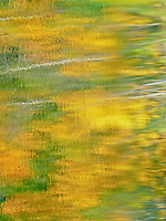 """FALL IMPRESSIONS""<br />