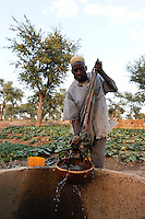 NIGER Zinder, CADEV Caritas Projekte Ernaehrungssicherung im Dorf Baban Tapki, Bewaesserung eines Gemuesegartens aus einem Brunnen / NIGER Zinder, village Baban Tapki, irrigation of vegetable garden from water well , MORE PICTURES ON THIS SUBJECT AVAILABLE!!