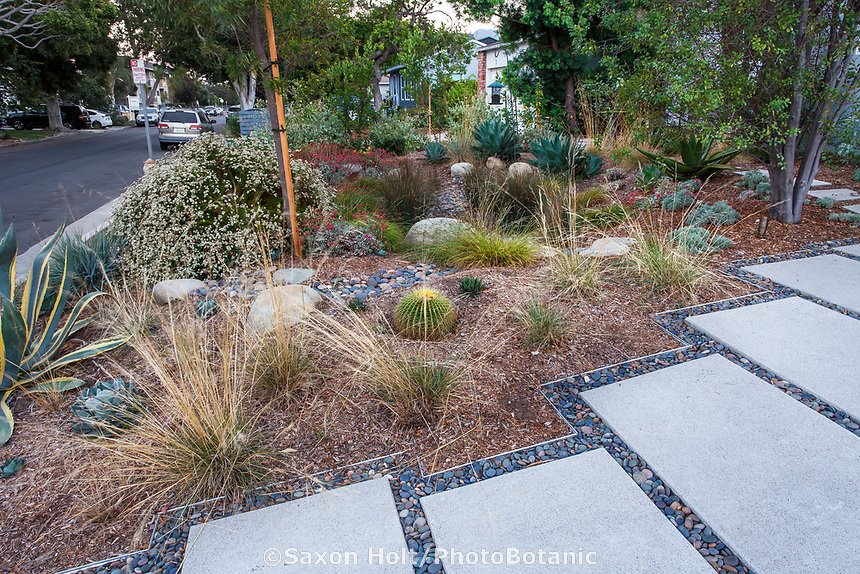Water conserving Southern California front yard garden with driveway designed for water percolation and rain water retention; certified Ocean Friendly Garden and National Wildlife Foundation Wildlife Habitat; Bobbie Allen garden; design Urban Water Group