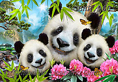 Howard, REALISTIC ANIMALS, REALISTISCHE TIERE, ANIMALES REALISTICOS, paintings+++++,GBHR960,#a#, EVERYDAY ,Selfie,Selfies