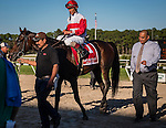 OLDSMAR, FLORIDA - FEBRUARY 11: Inspector Lynley #1, ridden by John R. Velazquez (red hat), after winning the Tampa Bay Stakes, at Tampa Bay Downs on February 11, 2017 in Oldsmar, Florida (photo by Douglas DeFelice/Eclipse Sportswire/Getty Images)