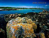 Tom Mackie, LANDSCAPES, LANDSCHAFTEN, PAISAJES, FOTO, photos,+4x5, 5x4, algae, coast, coastal, coastline, color, colorful, colour, colourful, Eire, EU, Europa, Europe, European, horizonta+l, horizontally, horizontals, Ireland, Irish, large format, lichen, pattern, patterns, rock, rocky, seaweed, shoreline, weath+ered,4x5, 5x4, algae, coast, coastal, coastline, color, colorful, colour, colourful, Eire, EU, Europa, Europe, European, hori+zontal, horizontally, horizontals, Ireland, Irish, large format, lichen, pattern, patterns, rock, rocky, seaweed, shoreline,+,GBTM030113-6,#L#, EVERYDAY ,Ireland