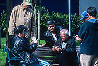 San Francisco, California, Chinatown. Chinese Men Playing Cards in Portsmouth Square.