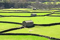 Stone barns near Gunnerside, North Yorkshire. View.
