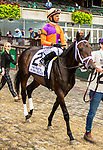 OCT 03, 2021: A MO REAY,post parade in  Gr.1  Frizette Stakes, for 2 year old fillies, at Belmont Park, Elmont, NY.  Sue Kawczynski/Eclipse Sportswire/CSM