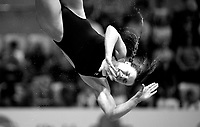 Great Britain's Gracie Reid competes in the 3m Springboard <br /> <br /> Photographer Hannah Fountain/CameraSport<br /> <br /> FINA/CNSG Diving World Series 2019 - Day 3 - Sunday 19th May 2019 - London Aquatics Centre - Queen Elizabeth Olympic Park - London<br /> <br /> World Copyright © 2019 CameraSport. All rights reserved. 43 Linden Ave. Countesthorpe. Leicester. England. LE8 5PG - Tel: +44 (0) 116 277 4147 - admin@camerasport.com - www.camerasport.com