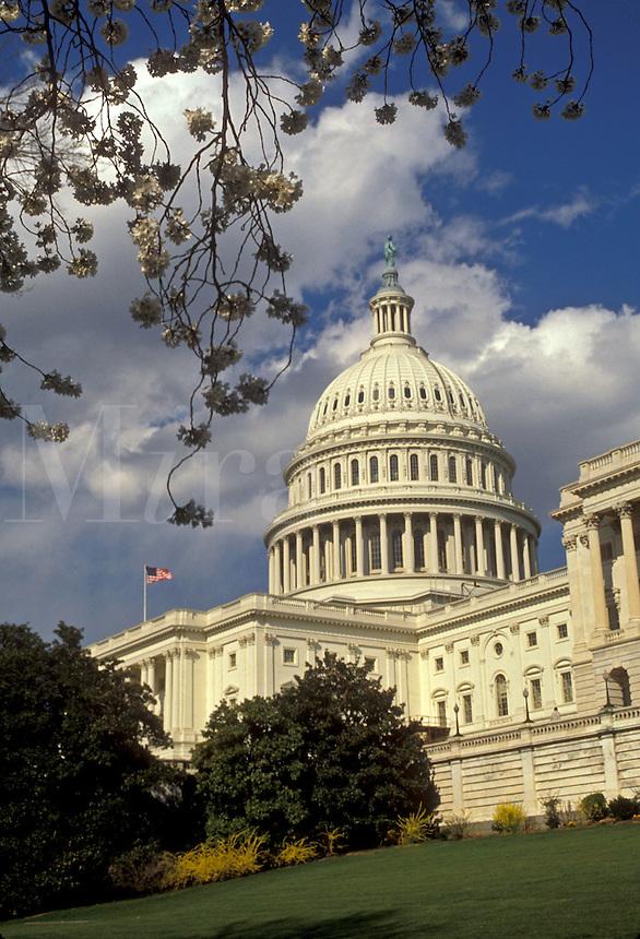 AJ2572, U.S. Capitol, Washington, DC, capitol, District of Columbia, capital city, United States Capitol Building in Washington, D.C.