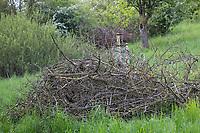 Reisighaufen, Ästehaufen, Totholz, Schnittgut aus Ästen und Zweigen wird auf einen Haufen gelegt und dient als Lebensraum für viele Tiere, brushwood, brush-wood