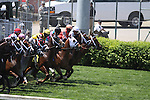Chamberlain Bridge with Jamie Theriot (white blinkers) at the start of The Churchill Downs Turf Sprint at Churchill Downs. 04.30.2010