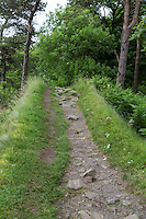Northumberland,  England, UK.  Only Segment of Hadrian's Wall Footpath where Hiking on the Wall is Permitted.  Approaching Housesteads Fort.