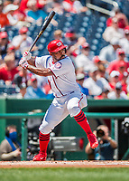 16 August 2017: Washington Nationals outfielder Howie Kendrick in action against the Los Angeles Angels at Nationals Park in Washington, DC. The Angels defeated the Nationals 3-2 to split their 2-game series. Mandatory Credit: Ed Wolfstein Photo *** RAW (NEF) Image File Available ***