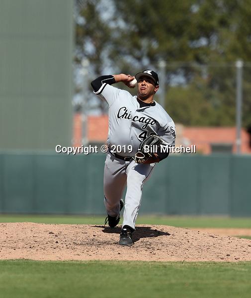 Karan Patel - 2019 AIL White Sox (Bill Mitchell)