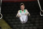 Sainsbury School Games 2014. Boys Atistic Gymnastics. Manchester MEN Arena September 2014