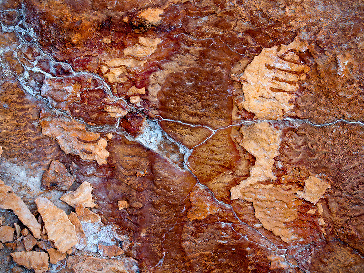 Abstract pattern in the travertine at Crystal Geyser along the Green River in southern Utah, USA.