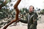 Foto: VidiPhoto<br /> <br /> LOENEN – Bos en hei op de Loenermark bij Loenen. Het Veluwse natuurgebied heeft net als de rest van de Veluwe veel last van verzuring en vermesting, veroorzaakt door een teveel aan stikstofneerslag. Gevolg is dat planten afsterven, insecten verdwijnen en eikenbomen dood gaan. Op een aantal plekken op de Veluwe is 90 procent van de eiken al afgestorven. Foto: Boswachter Clara Wilken.