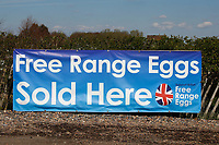 13-4-2021 Free range eggs sold here sign<br /> ©Tim Scrivener Photographer 07850 303986<br />      ....Covering Agriculture In The UK....