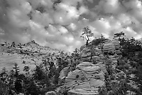 View of rock formations in Zion National Par, Utah