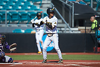 Tyler Simon (2) of the Kennesaw State Owls at bat against the Western Carolina Catamounts at Springs Brooks Stadium on February 22, 2020 in Conway, South Carolina. The Owls defeated the Catamounts 12-0.  (Brian Westerholt/Four Seam Images)