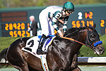 HOT SPRINGS, AR - March 18: Mor Spirit #2 and jockey Mike Smith win the Essex Handicap at Oaklawn Park on March 18, 2017 in Hot Springs, AR. (Photo by Ciara Bowen/Eclipse Sportswire/Getty Images)