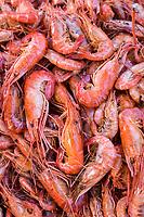 Tlacolula, Oaxaca, Mexico.  Tlacolula Market.  Shrimp.