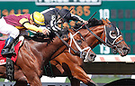 July 29, 2012 Royal Currier (#6), Joe Bravo up, wins the Teddy Drone Stakes at Monmouth Park Racetrack, Oceanport, NJ. Travelin Man is second. @Joan Fairman Kanes/Eclipse Sportswire