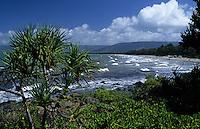 Océanie/Australie/Queensland/Port Douglas: La plage et la mer de corail