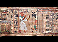 Ancient Egyptian Book of the Dead papyrus  - Aaner Book of the Dead, Thebes - 21st Dynasty (1076-943C).Turin Egyptian Museum. Black background<br /> <br /> During the 21st Dynasty the number of spells in Books of the Dead was often reduced in favour of decrative panels. small illustrated vignettes take up a large part of the papytus surface