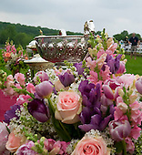 Flowers and bowls, Radnor, Pa.