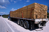 Freight truck carrying timber, Quintana Roo, Mexico.