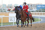 March 27, 2021: REBEL'S ROMANCE #10, ridden by jockey William Buick wins the UAE Derby for trainer Charlie Appleby on Dubai World Cup Day, Meydan Racecourse, Dubai, UAE. Shamela Hanley/Eclipse Sportswire/CSM