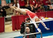 Razorbacks vs. Georgia Gymnastics - January 26, 2018