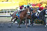 Out of Bounds by Discreet Cat breaks his maiden under Rafael Bejarano at Hollywood Park in Inglewood, CA. December 03, 2011